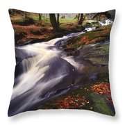 Sally Gap, County Wicklow, Ireland Throw Pillow