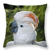 Salmon-crested Cockatoo Cacatua Throw Pillow