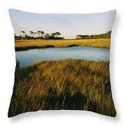 Salt Marsh, Assateague Island, Virginia Throw Pillow
