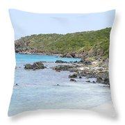 Salt Pond Bay Throw Pillow