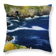 Saltee Islands, Co Wexford, Ireland Throw Pillow