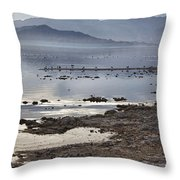 Salton Sea Birds Throw Pillow