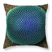 Saltwater Diatom Throw Pillow