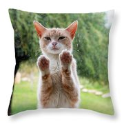 Salute Cat Throw Pillow