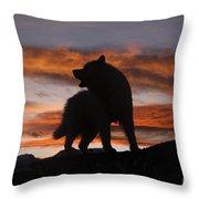 Samoyed At Sunset Throw Pillow