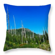 Sand Blasted Trees  Throw Pillow