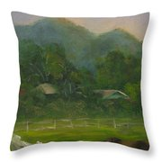 Sand Canyon Afternoon Throw Pillow