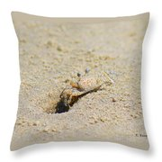 Sand Crab Digging His Hole Throw Pillow