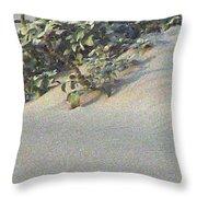 Sand Dune Greenery Throw Pillow