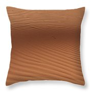 Sand Throw Pillow