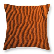 Sand Maze Throw Pillow