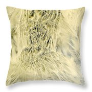 Sand Painting 2 Throw Pillow