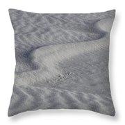 Sand Patterns 2 Throw Pillow