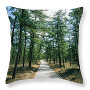 Sand Road Through The Pine Barrens, New Throw Pillow