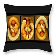 Sanded Woods Triptych Dark Throw Pillow