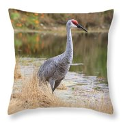 Sandhill Crane Beauty By The Pond Throw Pillow