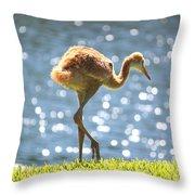 Sandhill Crane Daydreamer Throw Pillow
