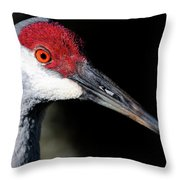 Sandhill Cranes Close Up Throw Pillow