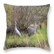 Sandhill Cranes In Colorful Marsh Throw Pillow