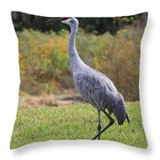 Sandhill In The Grass With Wildflowers Throw Pillow