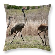 Sandhill Parade Throw Pillow