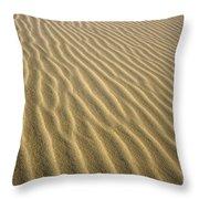 Sandhills Throw Pillow