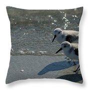 Sandpiper 5 Throw Pillow