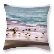 Sandpiper Evening Throw Pillow