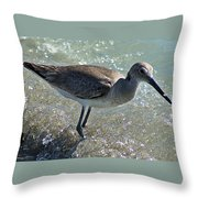 Sandpiper I Throw Pillow