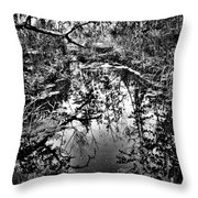 Sandy Creek Throw Pillow