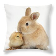 Sandy Rabbit And Yellow Bantam Chick Throw Pillow