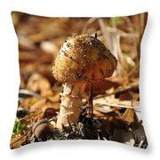 Sandy Shroom Throw Pillow