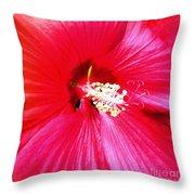 Sandy's Flower Throw Pillow