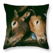 Sapa Market Throw Pillow