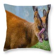 Satanic Tongue Throw Pillow