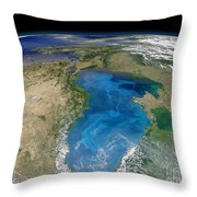 Satellite View Of Swirling Blue Throw Pillow