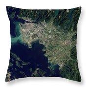 Satellite View Of The Frasier River Throw Pillow