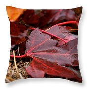 Saturated Maroon Throw Pillow