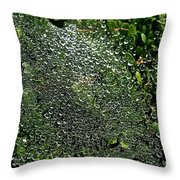 Saturated Spider Web Throw Pillow