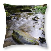 Satus Creek In Autumn Throw Pillow