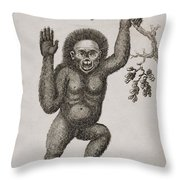 Satyrus, Ourang Outang. Pongo Or Jocko Throw Pillow by Ken Welsh