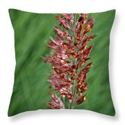 Savannah Ruby Grass Throw Pillow