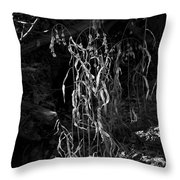 Saw Oats In River Flood Area Throw Pillow
