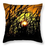 Sawgrass Sunrise Throw Pillow