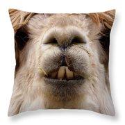 Say Wha Throw Pillow