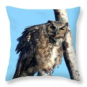 Say What Throw Pillow