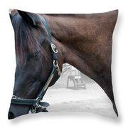 Sc-042-12 Altered Throw Pillow