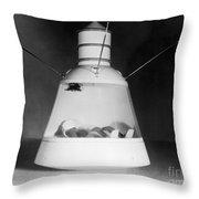 Scale Model Of Mercury Capsule Shape B Throw Pillow