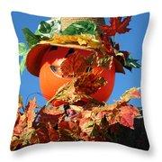 Scarecrow Boa Throw Pillow
