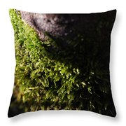 Scarf Of Green Throw Pillow